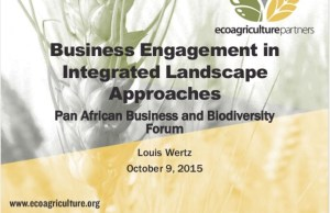 Business_Engagement_in_Integrated_Approaches_to_Sustainable_Developme…