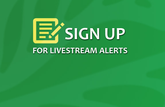 sign-up-live-stream-alerts