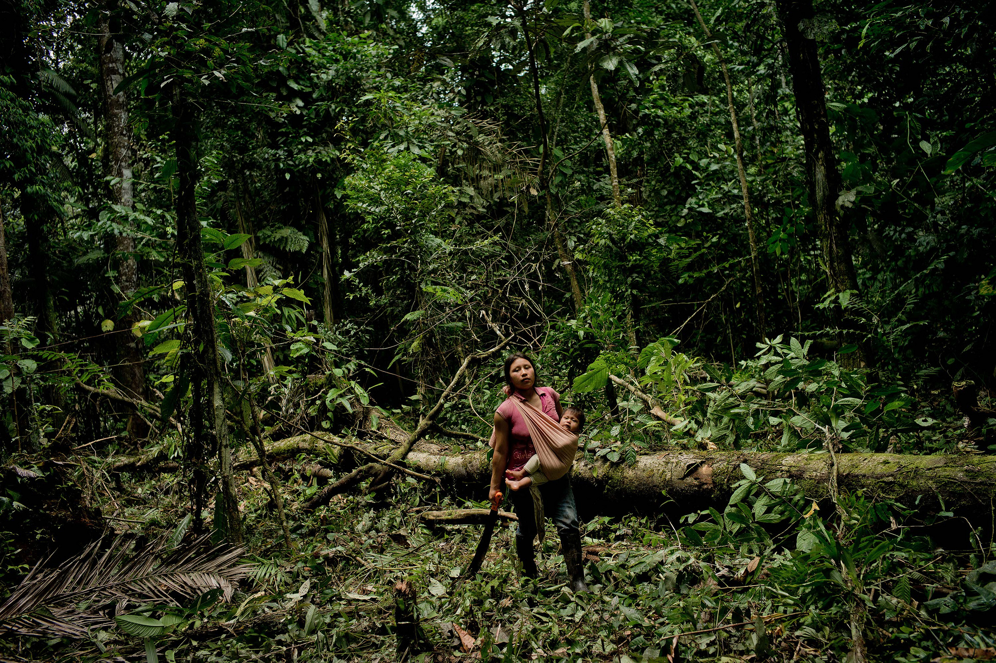 Photo: Tomas Munita/CIFOR