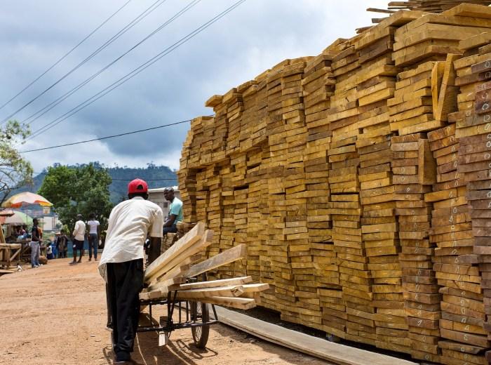 wood market cameroon