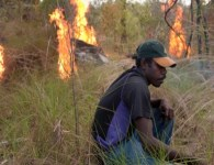 Ranger Ray Nadjamerrek demonstrates early dry season burning techniques in West Arnhem Land, Australia. Warddeken Land Management, Author provided