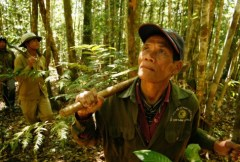 Paying for rainforests: current PLoS research on the economic valuation of ecosystem services