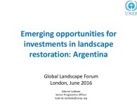 emerging-opportunities-for-investments-in-landscape-restoration-argentina-1-638
