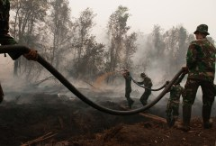 Peat fires stoke global warming – UN launches global initiative