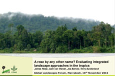 A rose by any other name? Evaluating integrated landscape approaches in the tropics