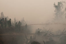 Global warming stoked by peatland fires