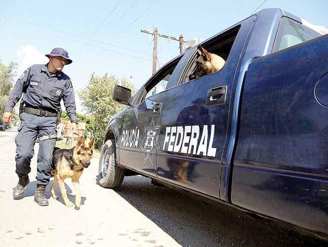 Toman de rehén a mamá del Tequilero; operativo en Guerrero para iniciar negociación