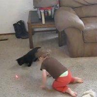 Kleinkind hilft Katze bei Laserpoint-Jagd