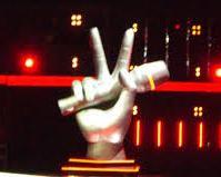 foto del logo di the voice of italy