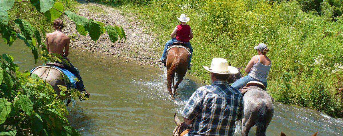 horse-back1