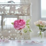 Pink roses in small vases