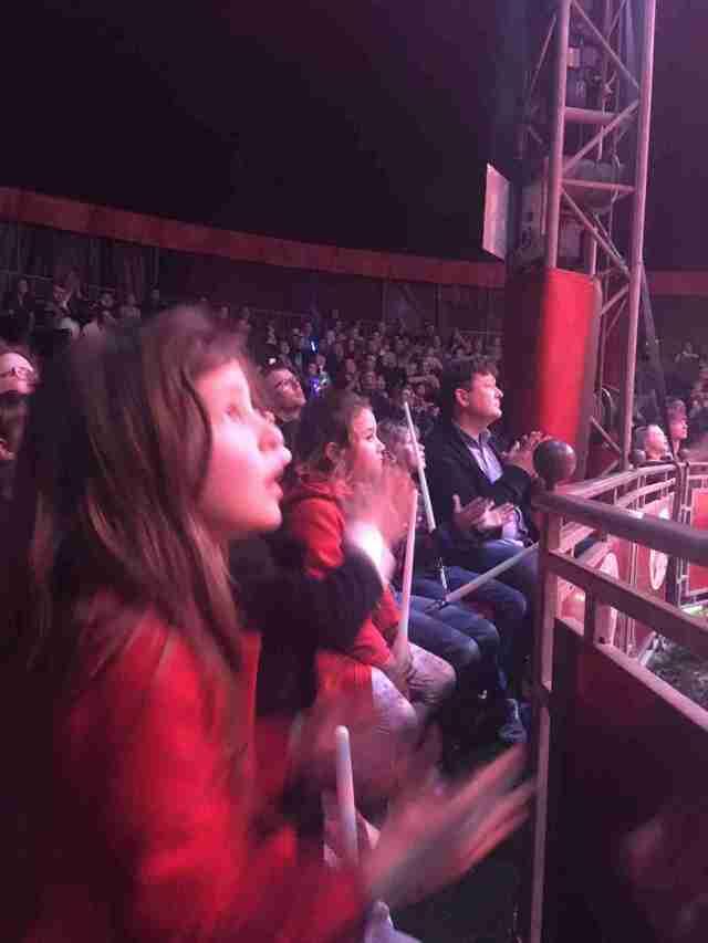 Zippos Circus Libby watching