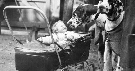 1930s-stroller-photolist