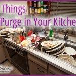 Purge Kitchen