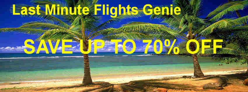 Image For Cheap Flights Discounted Airfare Deals On Airline