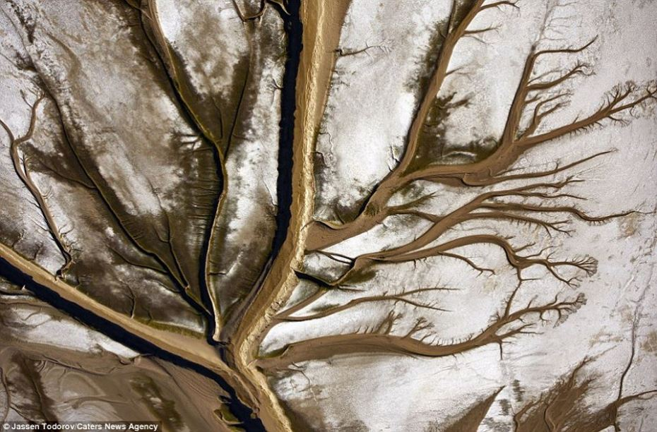 La nature incroyable Colorado-river-2.jpg?zoom=1