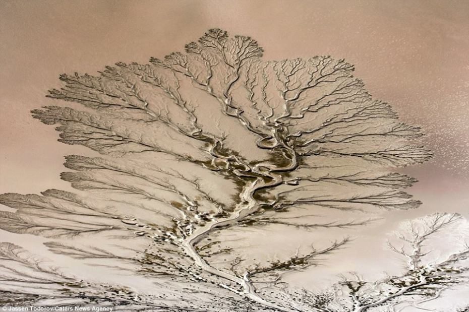 La nature incroyable Colorado-river-5.jpg?zoom=1