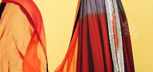 Pakistani chiffon dresses 2013