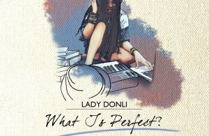 Lady Donli - What Is Perfect (WIP)