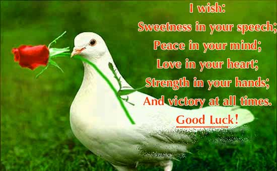 310+ All The Best Good Luck Images Pictures Photos Wallpaper
