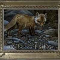 Red Fox Miniature Painting