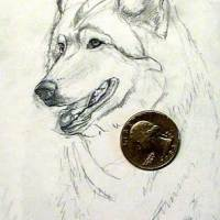 Miniature Watercolor Painting - Wolf