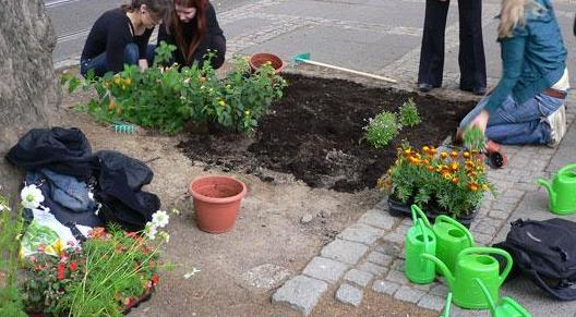 guerrilla-gardening-latina-47862713