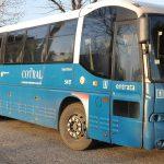 autobus-cotral-latina-bus