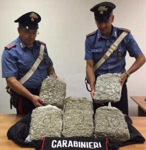 carabinieri-sequestro-marijuana