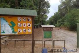 Due insetti minacciano la macchia mediterranea: l'iniziativa del Parco Nazionale del Circeo
