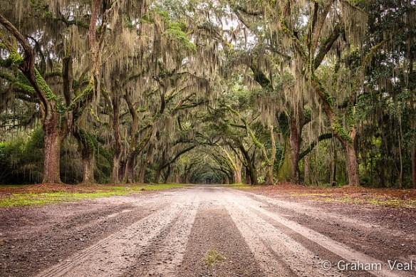 Savannah, unique proposal destinations
