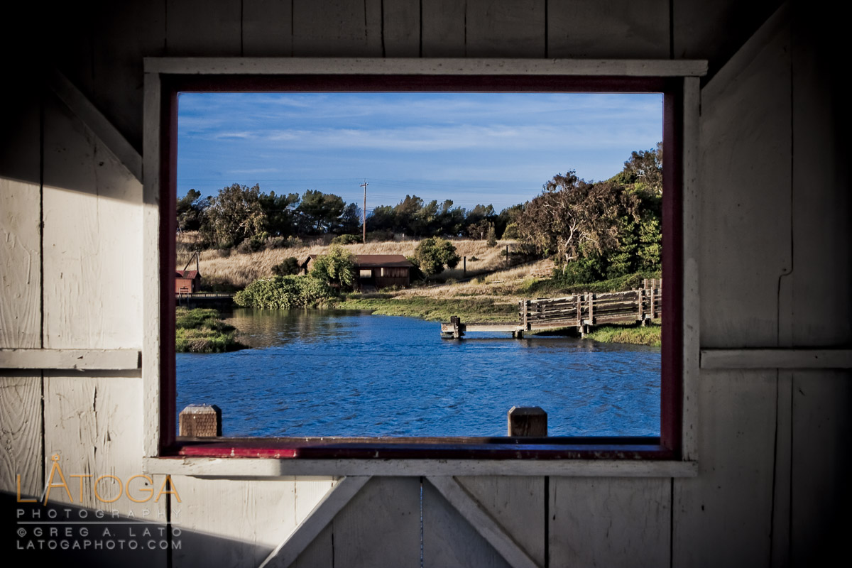PIcture Perfect View through the Window of the Picnic Shelter at the Newark Slough