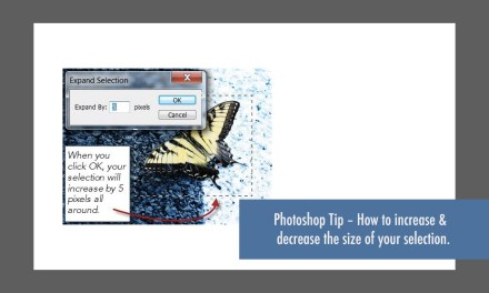 Photoshop Tip – How to increase and decrease the size of a selection