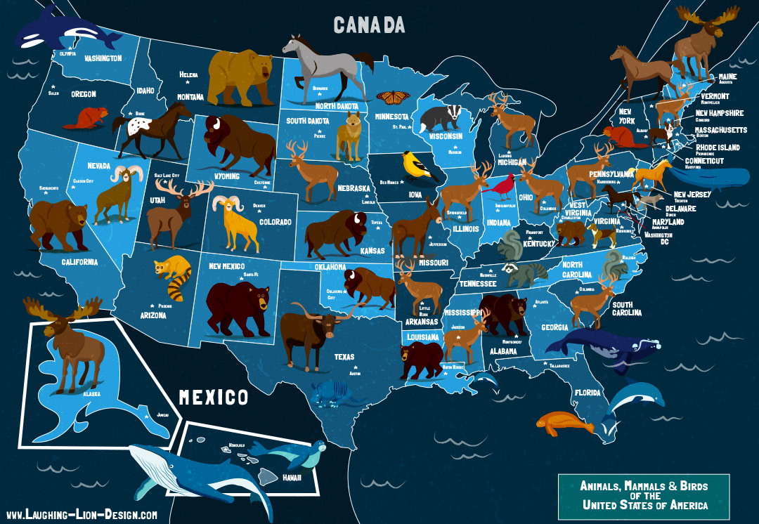 State Animals of the U.S.A. Map
