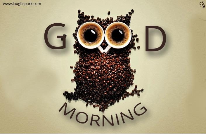Cute Baby Whatsapp Wallpaper Owl Made Of Coffee Beans Good Morning Image