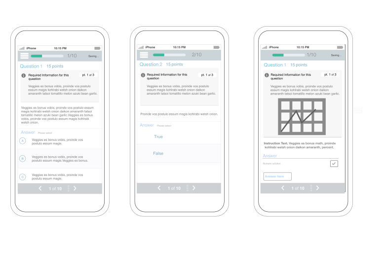 The mobile experience for students required making several assignment types accessible via mobile.