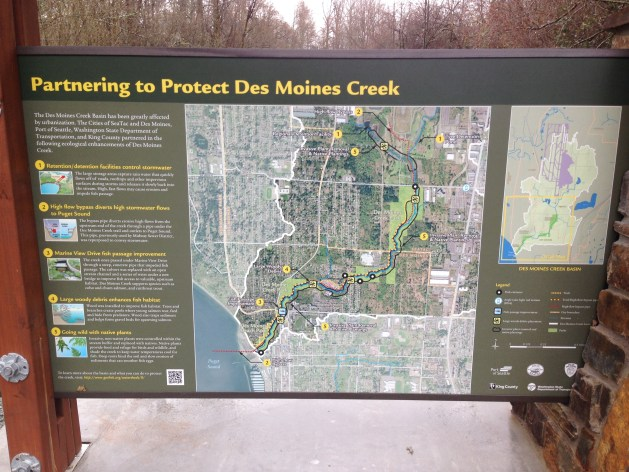 Partnering to protect Des Moines Creek