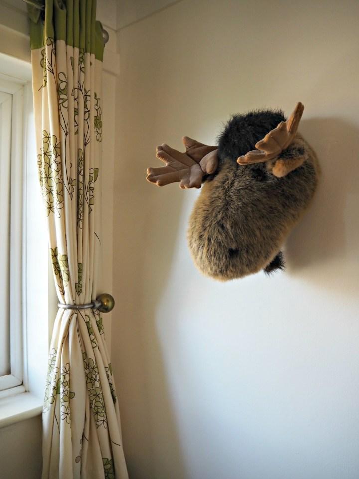 Logan-room-moose-head