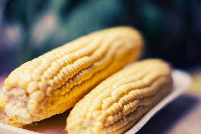 corn02