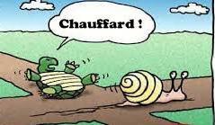 chauffard