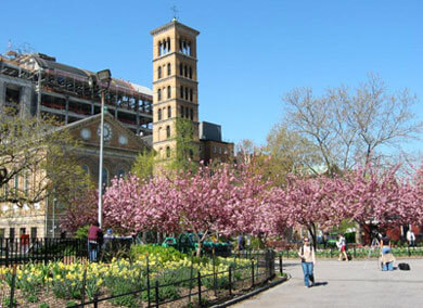 4 Legal Resume Examples In Selden Ny Livecareer New York University School Of Law Lawcrossing