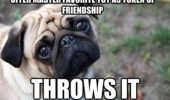 A picture of a pug dog. Offer master favorite toy as token of friendship. Throws it.