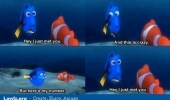 finding-nemo-pixar-call-me-maybe-meme-dory-marlin-i-just-met-you-this-is-crazy-number