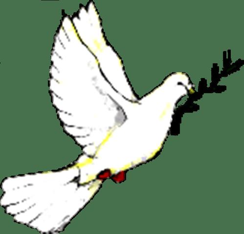 Lay Anglicana Blog