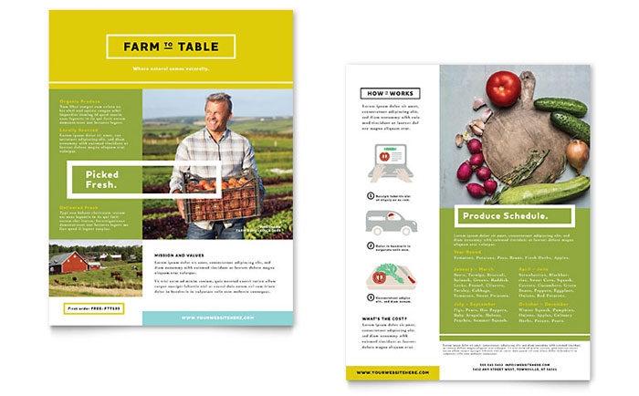 Organic Food Datasheet Template - Word  Publisher - one sheet template word
