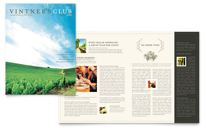 Travel  Tourism - Newsletter Templates - Word  Publisher