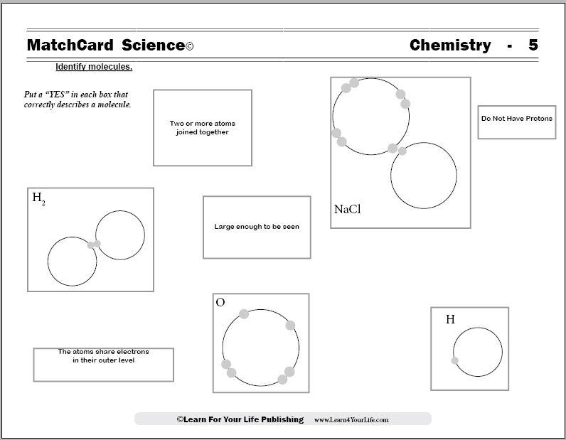 Molecule Worksheets - molecule vs atom