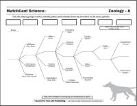 Scientific Classification Worksheet