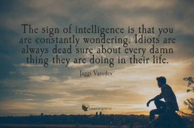 The sign of intelligence is that you are constantly wondering – Learning Mind