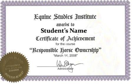 Sample Of Certificate Of Completion - Template Examples - certificate sample